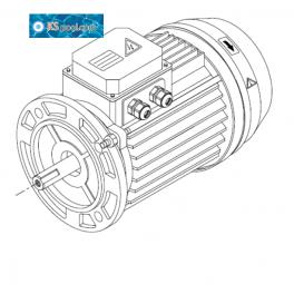 Repuestos / recambios motores Kripsol