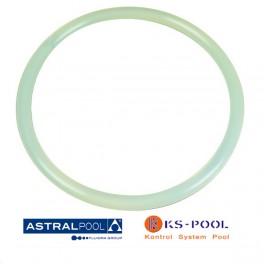 Recambio junta tapa filtro aster Astralpool